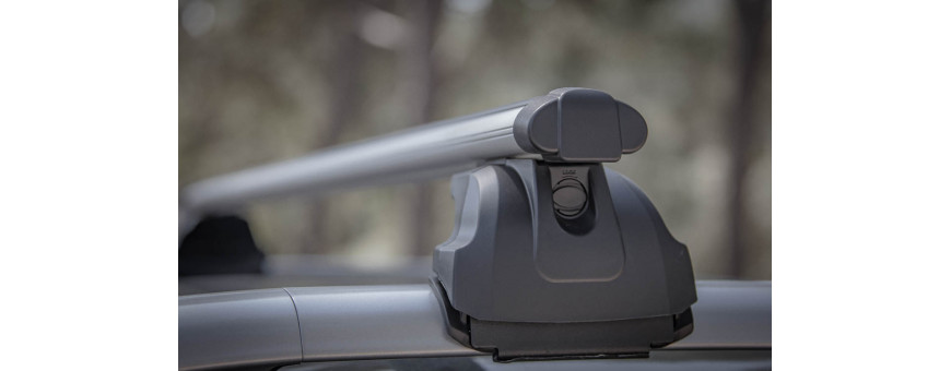 Ford Ecosport Roof Bar